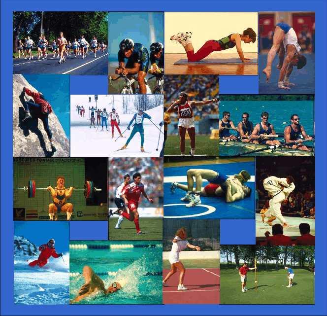 olympische sommerspiele sportarten